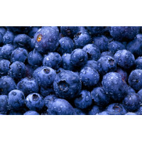 Nitrogen Ice Cream Premix Blueberry - 800G
