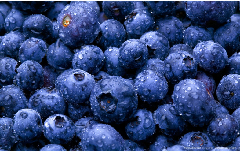 Sauce Premix Blueberry - 400G