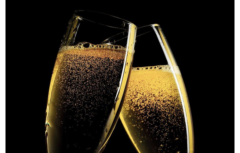 Protein Shake Premix Champagne - 800G