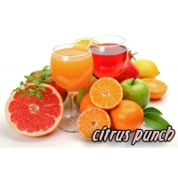 Smoothie Premix Citrus Punch - 4000G