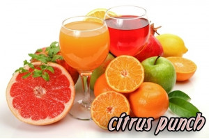 Smoothie Premix Citrus Punch