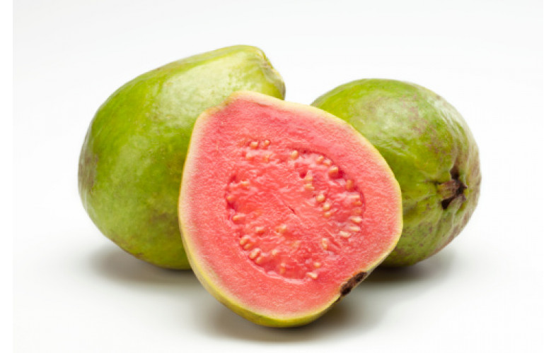 Gelato Premix Guava - 800G