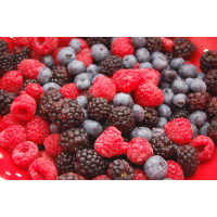 Frozen Yoghurt Premix Mix Berries - 400G