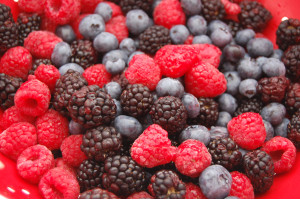 Frozen Yoghurt Premix Mix Berries