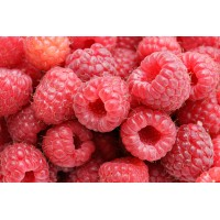 Nitrogen Ice Cream Premix Raspberry - 800G