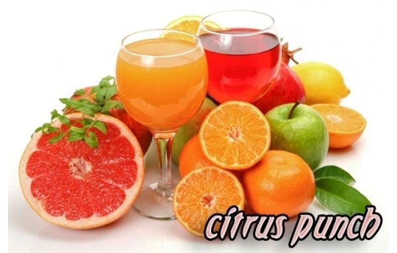 Softy Premix Citrus Punch - 800G
