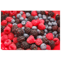 Softy Premix Mix Berries - 800G