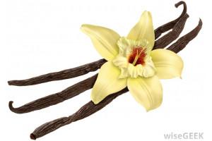 Ice Cream Premix Vanilla - 4000G