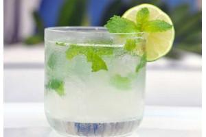 Lemonade Premix Virgin Mojito - 4000g